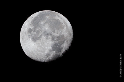 Waning Gibbous 96% shot from the garden
