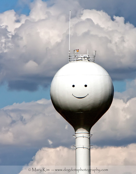 Happy Face On The Prairie