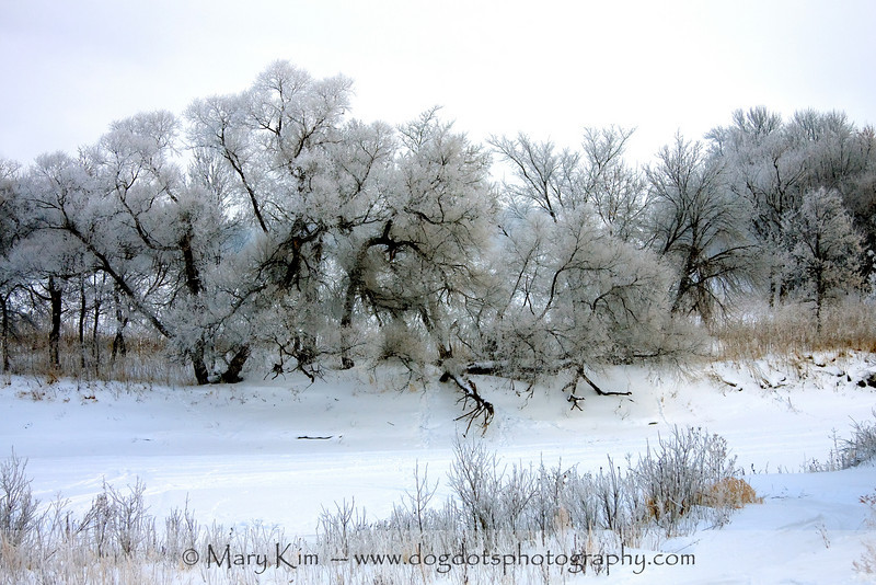 Along The Red River