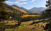 Lockett Meadow in the foreground and the Inner Basin in the background, near Flagstaff, AZ