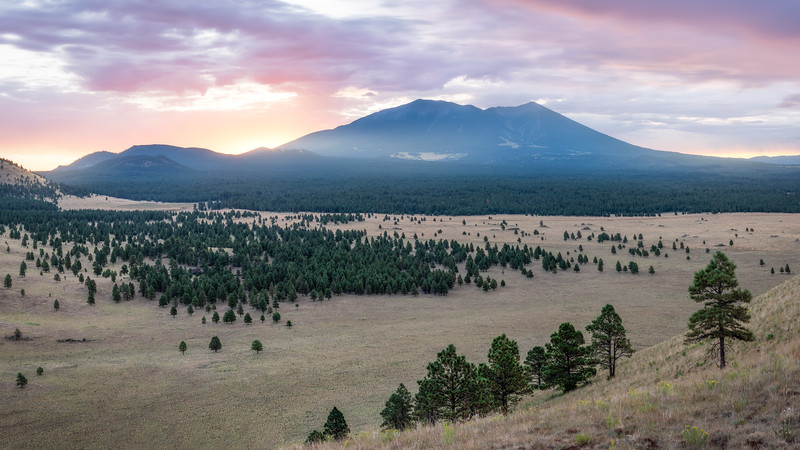 Dawn in Flagstaff