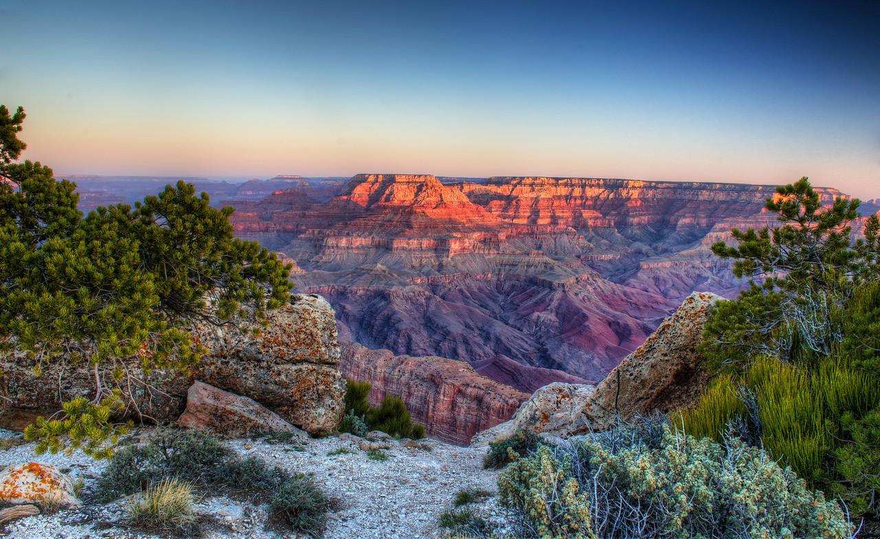 Grand Canyon Sunrise With Vegetation