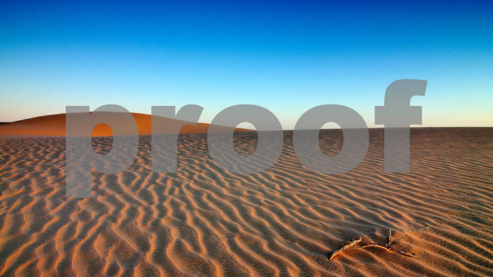 Vigar Well dunes, Mungo National Park