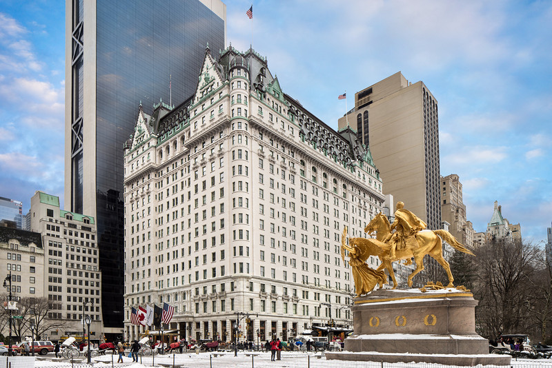 NYC_2014_Plaza_0193