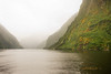 Fogs, Doubtful Sound