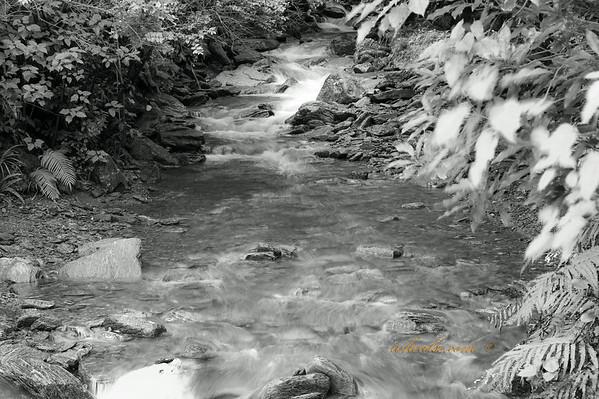 River flows in Franz Josef
