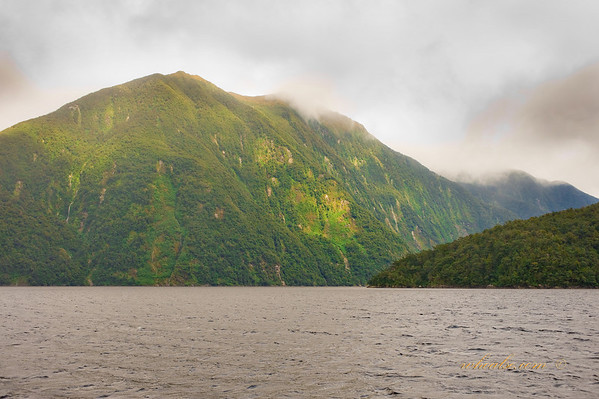 Lighted, Doubtful Sound
