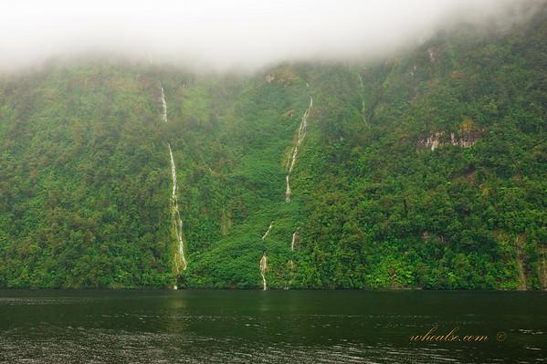 Vertical Rivers aka Waterfalls, Doubtful Sound