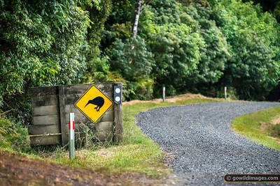 Kiwis Crossing