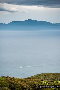 The Third Island