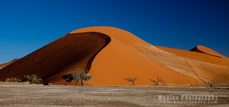 Fantastic Red Sand Dunes of Sossusvlei