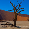 Dead Vlei Clay Pan