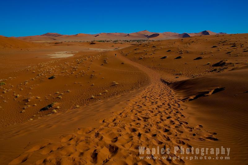 Oxidized Red Sand