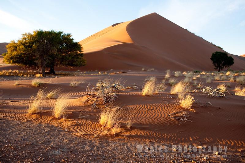 Fantastic Sand Dune at Sunrise