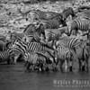 Waterhole, Etosha National Park