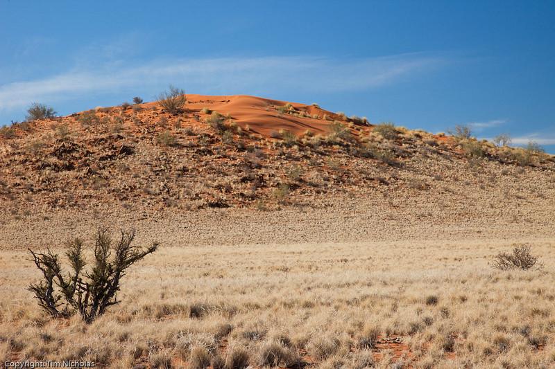 Namibia09-0796