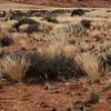Namibia09-0887