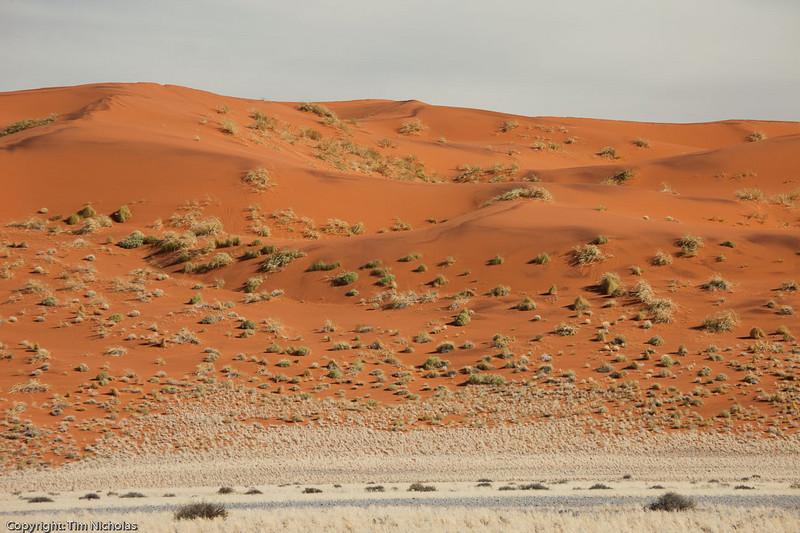 Namibia09-0895