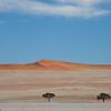 Namibia09-0859