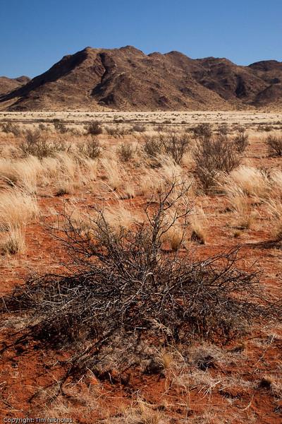Namibia09-0768