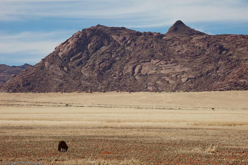 Namibia09-0871