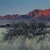 Namibia09-0832