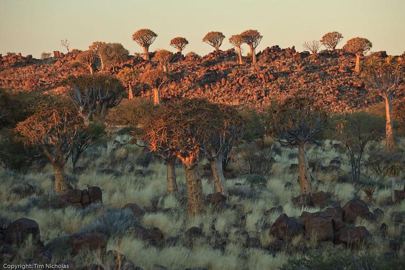 Namibia09-1211