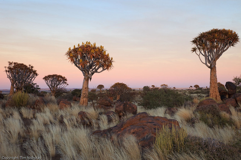 Namibia09-1244