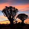 Namibia09-1235