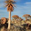 Namibia09-1258