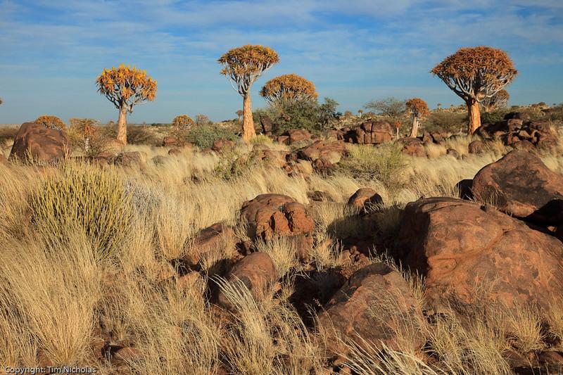 Namibia09-1264
