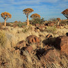 Namibia09-1264