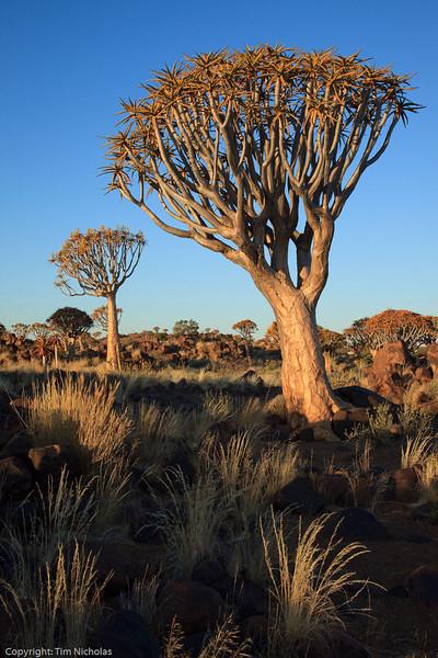 Namibia09-1200