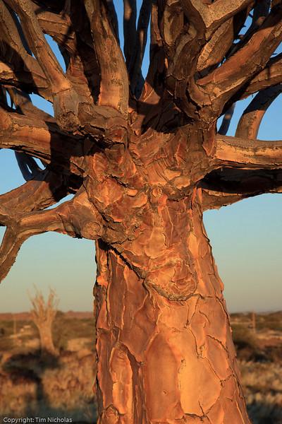 Namibia09-1206
