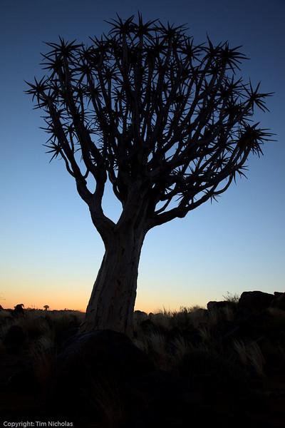 Namibia09-1217