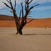 Namibia09-0985