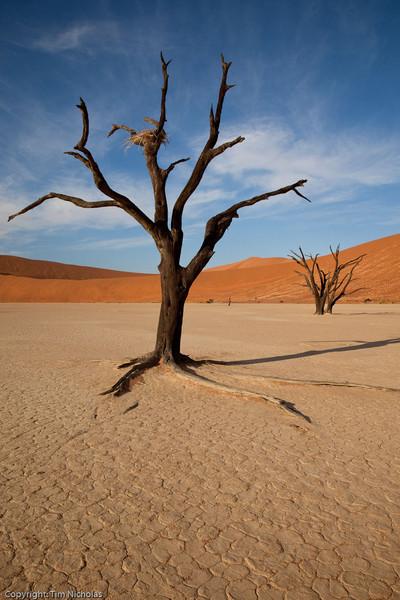 Namibia09-0990