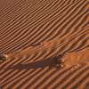 Sossuslvlei: Dune ripples