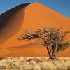 Namibia09-1067