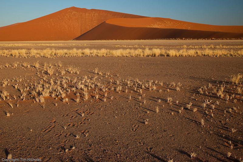 Namibia09-1044