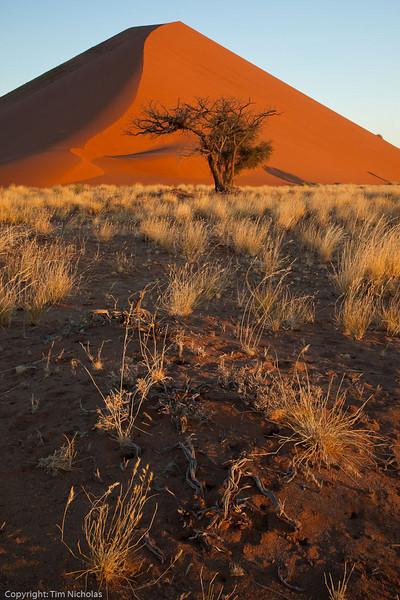 Namibia09-1074