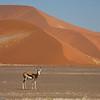 Namibia09-1028