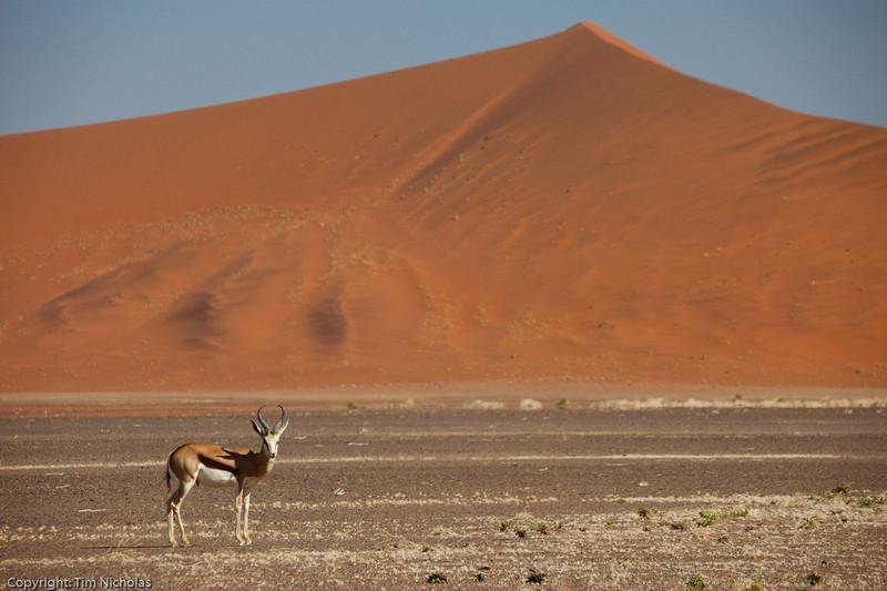 Namibia09-1021