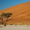 Namibia09-1085