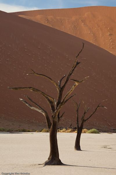 Namibia09-1004