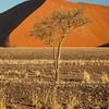 Namibia09-0957