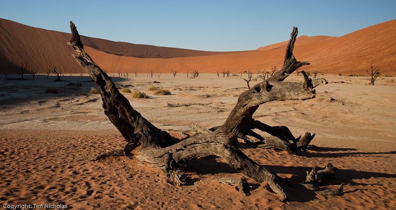 Namibia09-1097