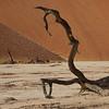 Namibia09-1017