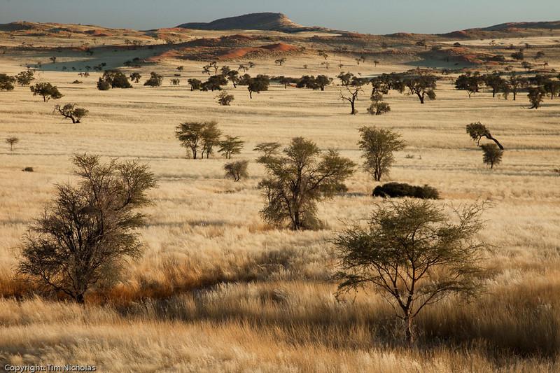 Tsonab Valley Farm open grasslands