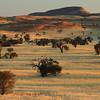 Namibia09-1126